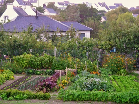 Brittany, France, kitchen garden