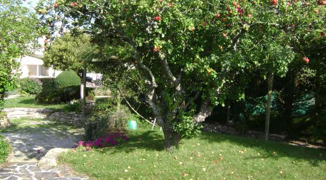 Landscaped Orchard Garden and arbor near the sea