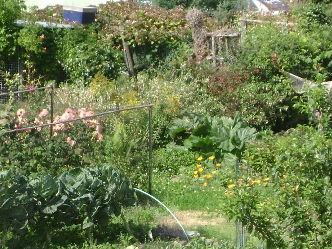 Crozon – Brittany: A Cozy Flowered Kitchen Garden
