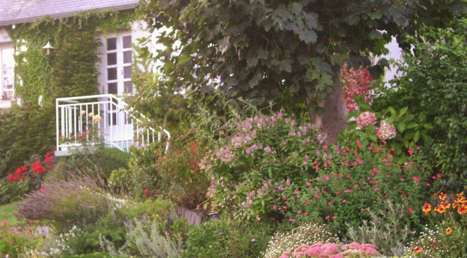 Bright Colors for this Camaret Flower Garden