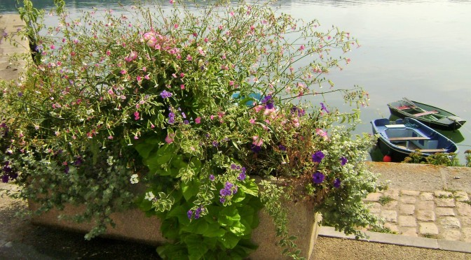Container Gardening Ideas From Brittany Villages