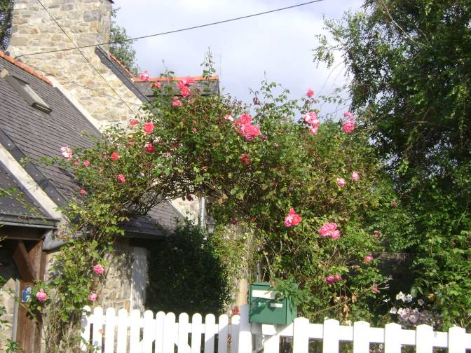 Fairytale Cottage Rose Garden in France