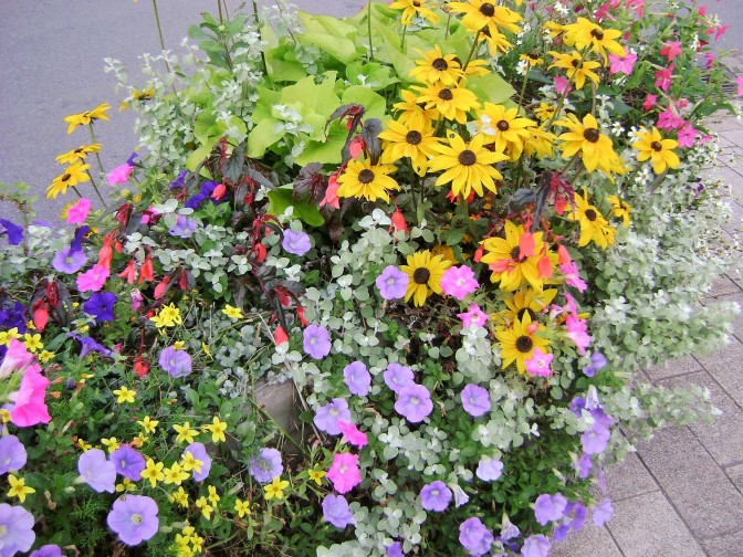 More Planter & Container Ideas From Brittany Villages