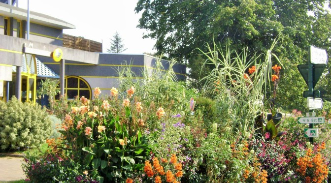 Unusual Post Office Perennial Borders in France