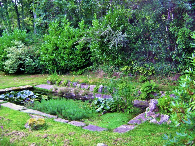 French Wash House Basin Converted into Aquatic Garden