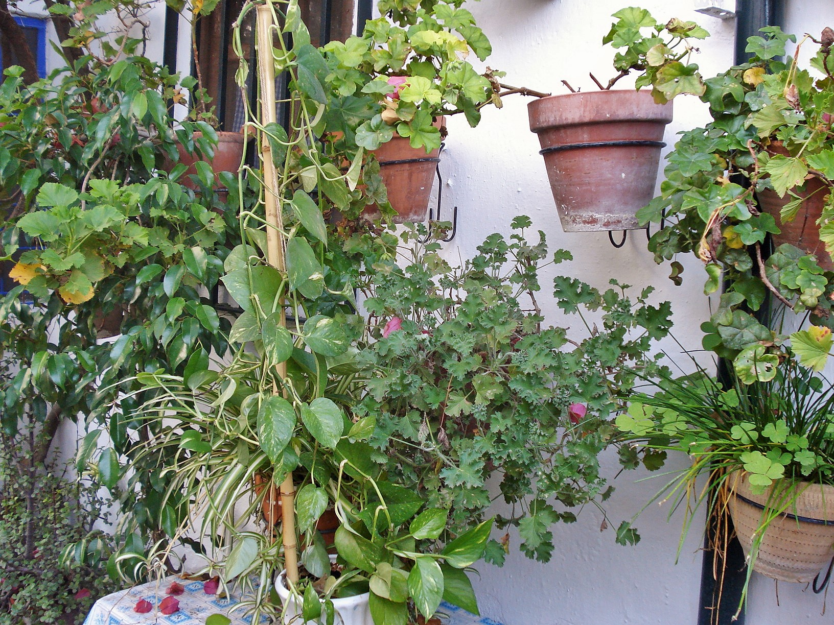 Casa del patio in cordoba vertical container gardening for Vertical garden containers