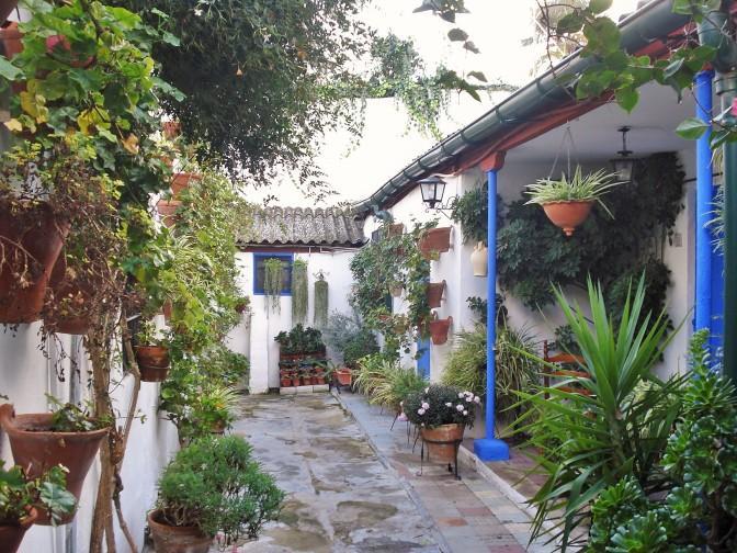 Casa del Patio in Cordoba: Vertical & Container Gardening Ideas