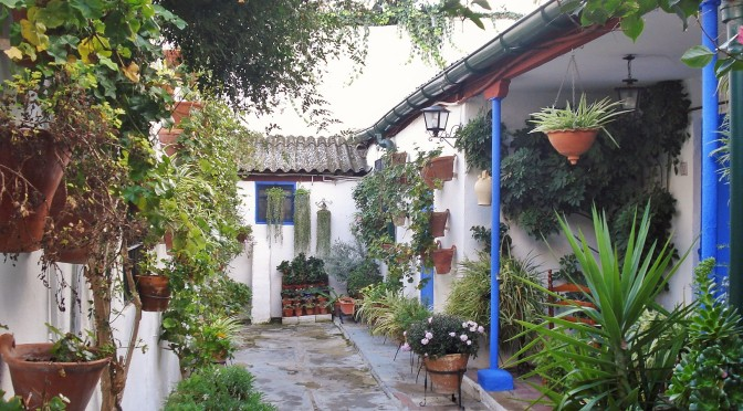 Casa del Patio in Cordoba: Vertical & Container Gardening Ideas