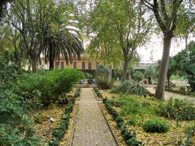 Cordoba Botanical Gardens: the Scientific Garden