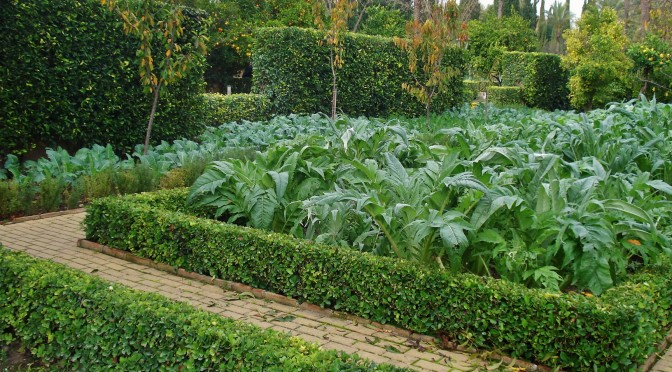 Cordoba Botanical Gardens: Sustainable Gardening & the Kitchen Garden