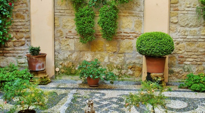 A Delightful Andalusian Patio in a Government Building, Spain