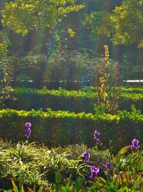 Alcazar Gardens, Sevilla