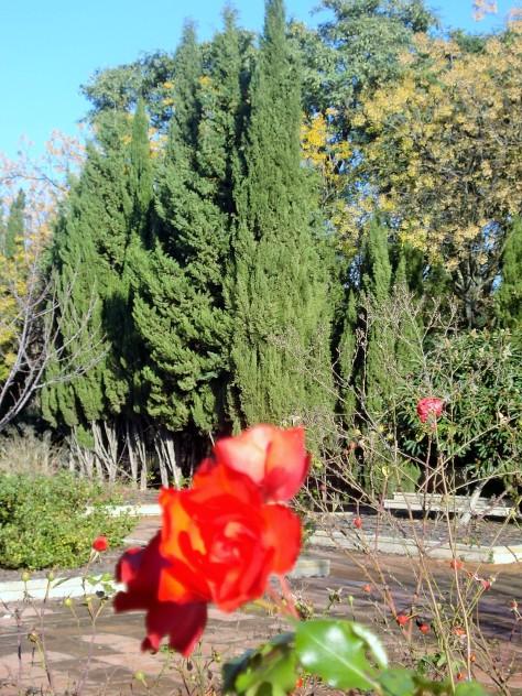 Guadalquivir Gardens (Jardines del Guadalquivir), Sevilla, Spain