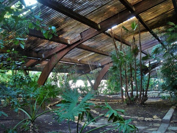 Jardin Americano: Sevilla's Botanical Gardens