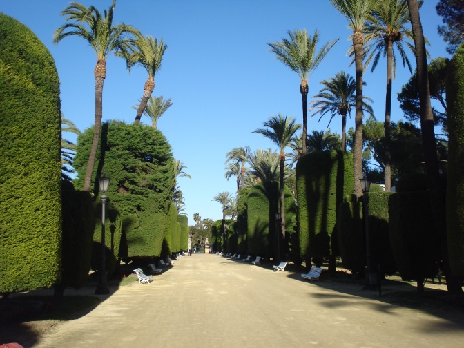 Cadiz' Historic Parque Genoves: The Botanical Garden