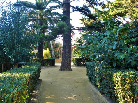 Parque Genoves Botanical Gardens, Cadiz, Spain