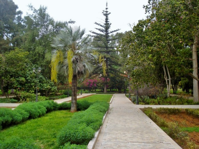 The Jardins d'Essais: Rabat's Historic Botanical Gardens, Part I