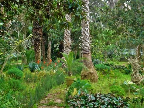 Jardins d'Essais, Botanical Gardens, Rabat, Morocco