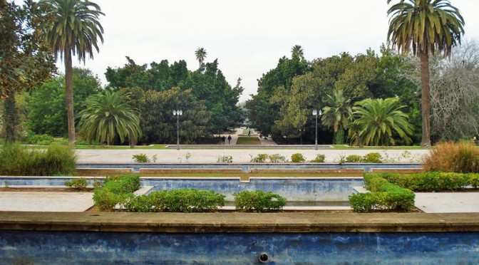The Jardins d'Essais: Rabat's Historic Botanical Gardens, Part III, Vines, Fruit Trees and Palms
